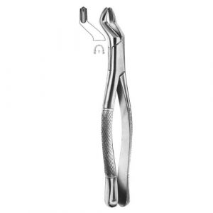 Extracting Forceps (American Pattern)
