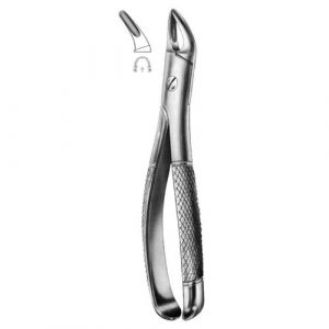 Extracting Forceps English Pattern No 100