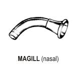 Magill Aural Connection